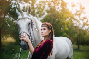האביר על הסוס הלבן
